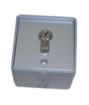 Schlüsseltaster in grauem Kunststoffgehäuse
